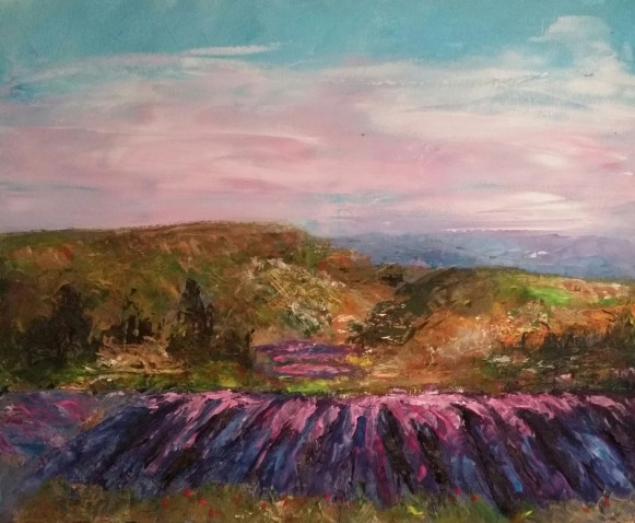 lavender in the provence